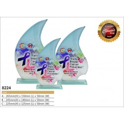 Color Crystal Award 8224