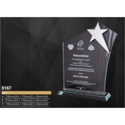 2D & 3D Inner Laser Awards 9167